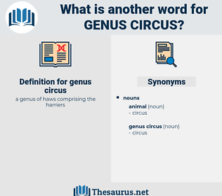 genus circus, synonym genus circus, another word for genus circus, words like genus circus, thesaurus genus circus