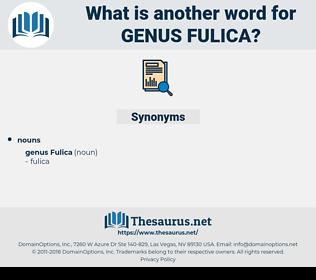 Genus Fulica, synonym Genus Fulica, another word for Genus Fulica, words like Genus Fulica, thesaurus Genus Fulica