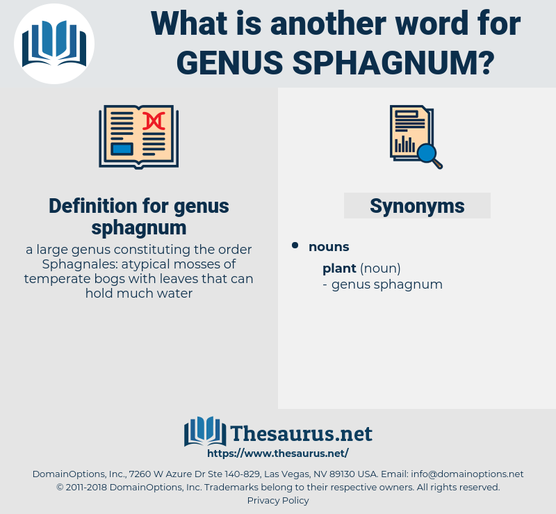 genus sphagnum, synonym genus sphagnum, another word for genus sphagnum, words like genus sphagnum, thesaurus genus sphagnum