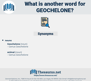 geochelone, synonym geochelone, another word for geochelone, words like geochelone, thesaurus geochelone