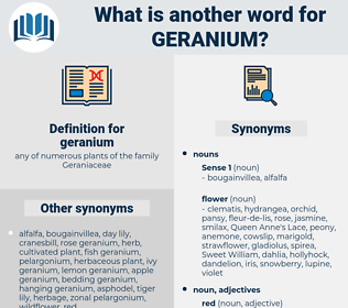 geranium, synonym geranium, another word for geranium, words like geranium, thesaurus geranium