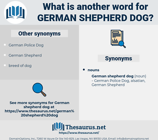 German Shepherd Dog, synonym German Shepherd Dog, another word for German Shepherd Dog, words like German Shepherd Dog, thesaurus German Shepherd Dog