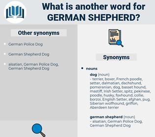 German Shepherd, synonym German Shepherd, another word for German Shepherd, words like German Shepherd, thesaurus German Shepherd