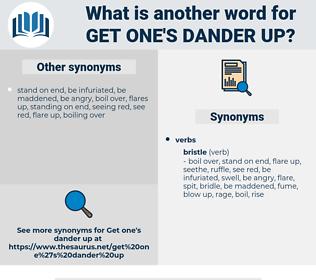 get one's dander up, synonym get one's dander up, another word for get one's dander up, words like get one's dander up, thesaurus get one's dander up