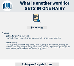 gets in one hair, synonym gets in one hair, another word for gets in one hair, words like gets in one hair, thesaurus gets in one hair
