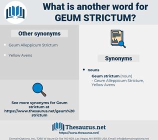 Geum Strictum, synonym Geum Strictum, another word for Geum Strictum, words like Geum Strictum, thesaurus Geum Strictum