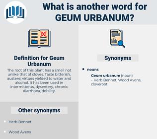 Geum Urbanum, synonym Geum Urbanum, another word for Geum Urbanum, words like Geum Urbanum, thesaurus Geum Urbanum