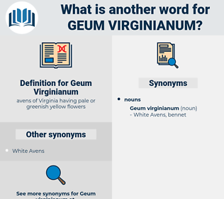 Geum Virginianum, synonym Geum Virginianum, another word for Geum Virginianum, words like Geum Virginianum, thesaurus Geum Virginianum