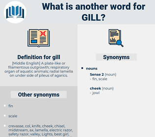 gill, synonym gill, another word for gill, words like gill, thesaurus gill