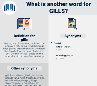 gills, synonym gills, another word for gills, words like gills, thesaurus gills