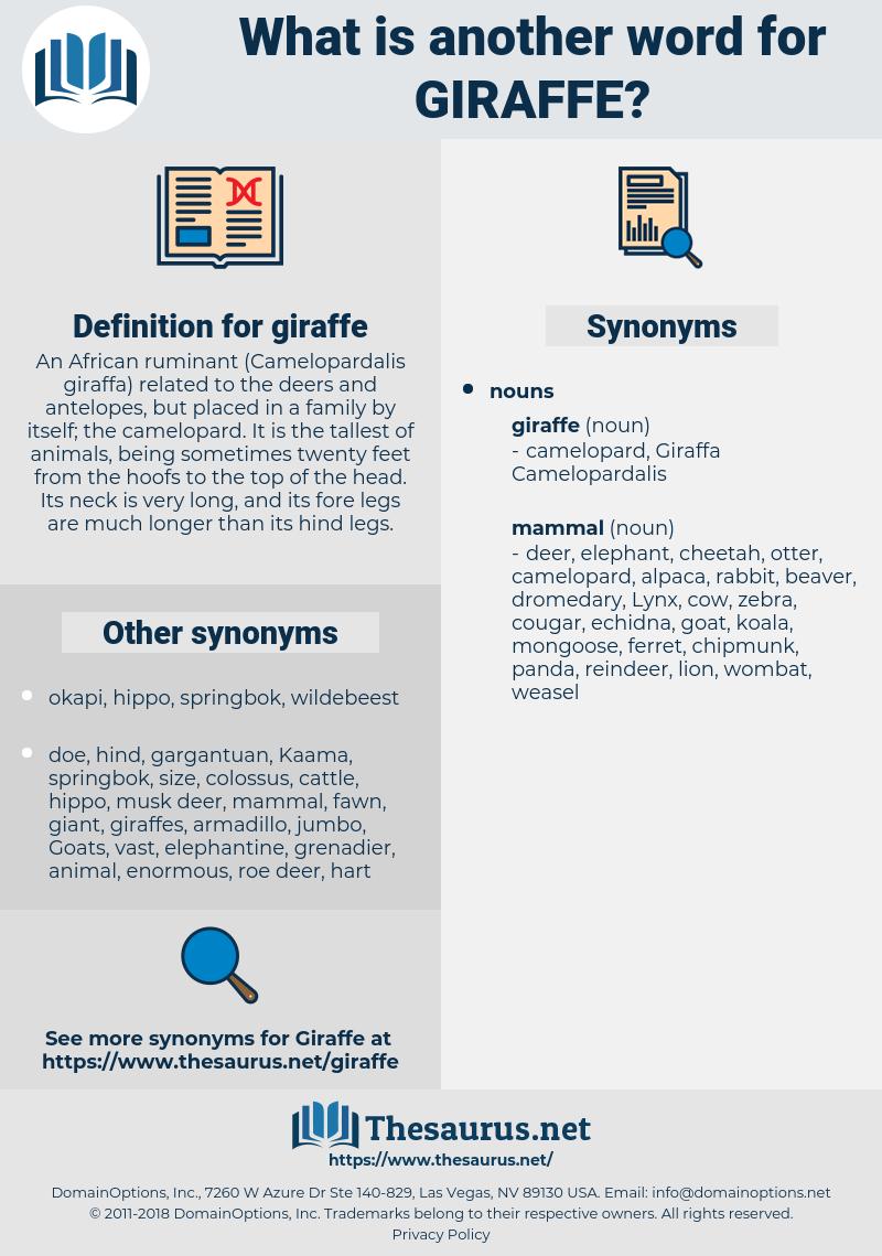 giraffe, synonym giraffe, another word for giraffe, words like giraffe, thesaurus giraffe