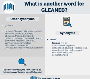 Gleaned, synonym Gleaned, another word for Gleaned, words like Gleaned, thesaurus Gleaned