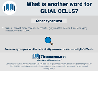 Glial Cells, synonym Glial Cells, another word for Glial Cells, words like Glial Cells, thesaurus Glial Cells