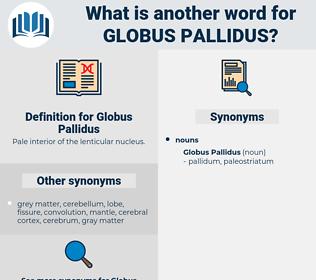 Globus Pallidus, synonym Globus Pallidus, another word for Globus Pallidus, words like Globus Pallidus, thesaurus Globus Pallidus