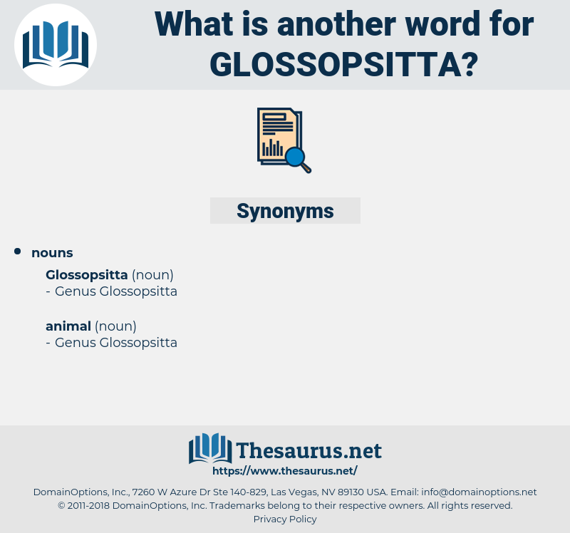 glossopsitta, synonym glossopsitta, another word for glossopsitta, words like glossopsitta, thesaurus glossopsitta