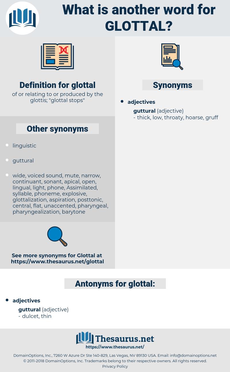 glottal, synonym glottal, another word for glottal, words like glottal, thesaurus glottal