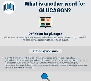 glucagon, synonym glucagon, another word for glucagon, words like glucagon, thesaurus glucagon