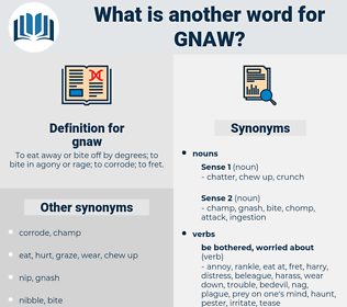 gnaw, synonym gnaw, another word for gnaw, words like gnaw, thesaurus gnaw