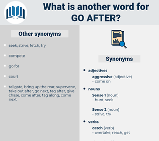 go after, synonym go after, another word for go after, words like go after, thesaurus go after