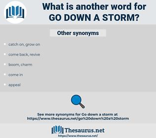 go down a storm, synonym go down a storm, another word for go down a storm, words like go down a storm, thesaurus go down a storm