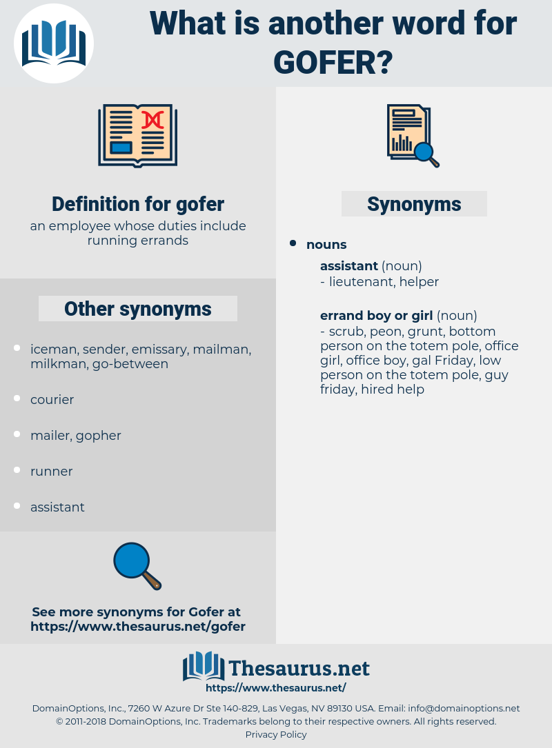 gofer, synonym gofer, another word for gofer, words like gofer, thesaurus gofer