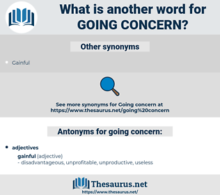 going concern, synonym going concern, another word for going concern, words like going concern, thesaurus going concern