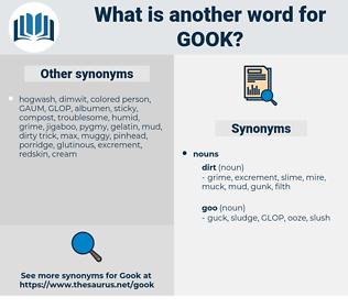 gook, synonym gook, another word for gook, words like gook, thesaurus gook