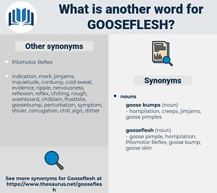gooseflesh, synonym gooseflesh, another word for gooseflesh, words like gooseflesh, thesaurus gooseflesh