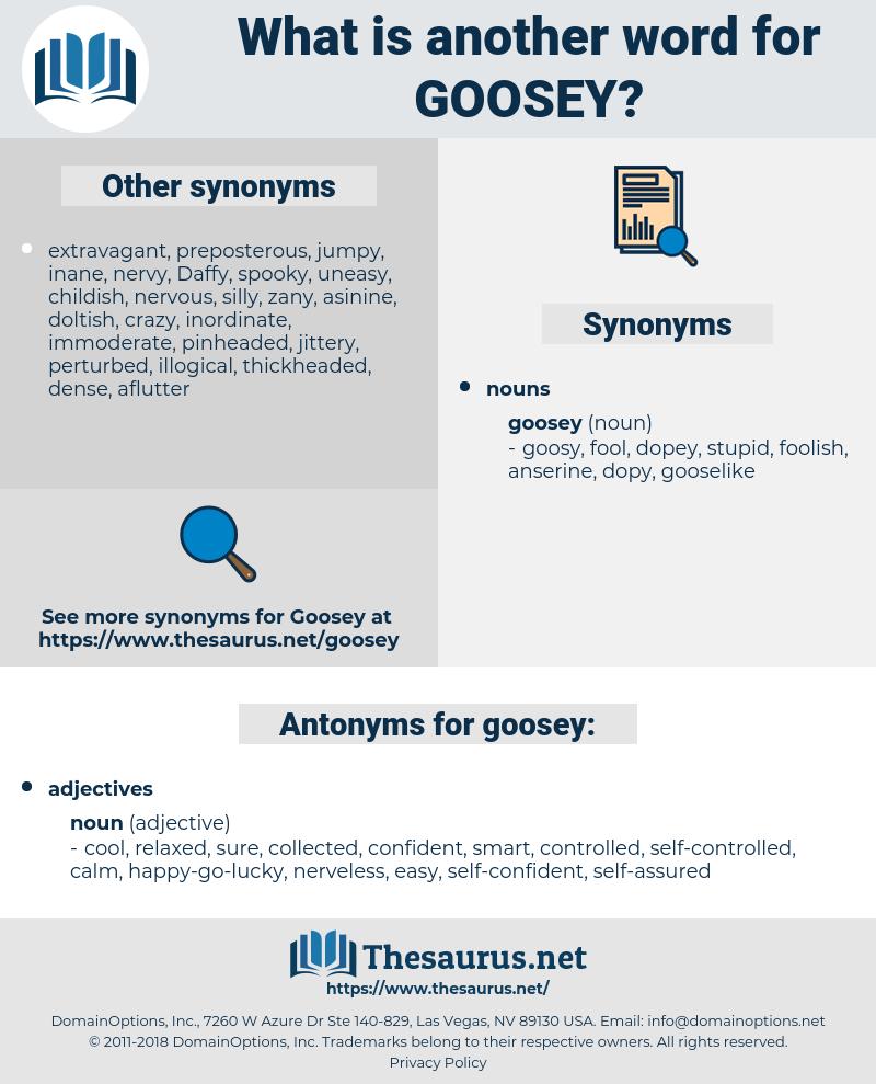 goosey, synonym goosey, another word for goosey, words like goosey, thesaurus goosey