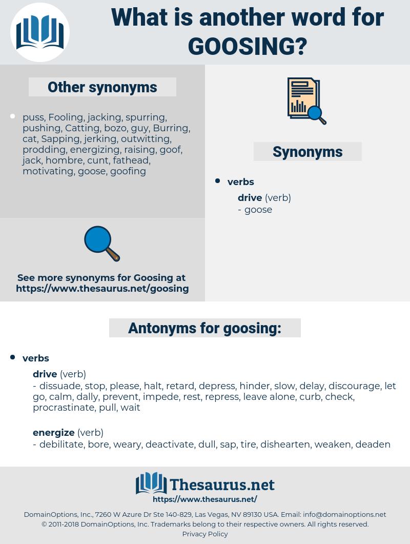 goosing, synonym goosing, another word for goosing, words like goosing, thesaurus goosing