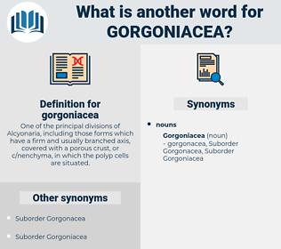 gorgoniacea, synonym gorgoniacea, another word for gorgoniacea, words like gorgoniacea, thesaurus gorgoniacea