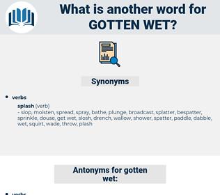 gotten wet, synonym gotten wet, another word for gotten wet, words like gotten wet, thesaurus gotten wet