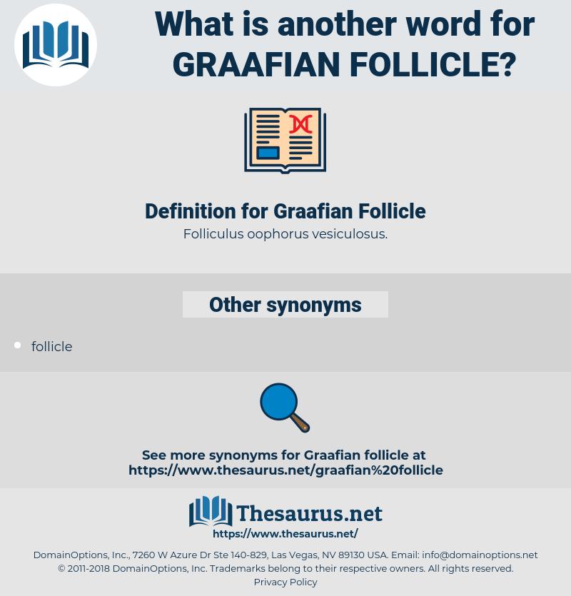 Graafian Follicle, synonym Graafian Follicle, another word for Graafian Follicle, words like Graafian Follicle, thesaurus Graafian Follicle