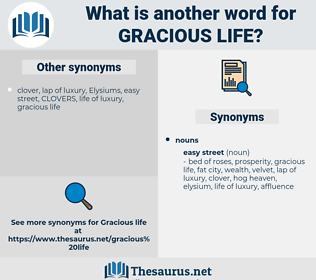 gracious life, synonym gracious life, another word for gracious life, words like gracious life, thesaurus gracious life