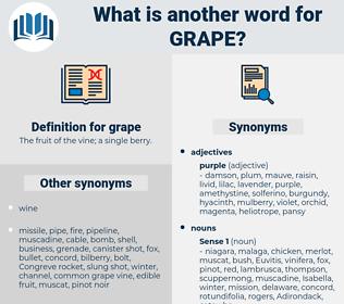 grape, synonym grape, another word for grape, words like grape, thesaurus grape