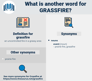 grassfire, synonym grassfire, another word for grassfire, words like grassfire, thesaurus grassfire
