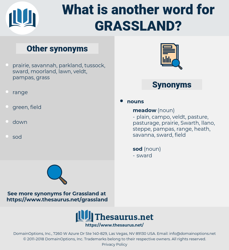 grassland, synonym grassland, another word for grassland, words like grassland, thesaurus grassland