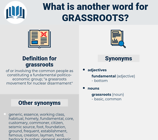 grassroots, synonym grassroots, another word for grassroots, words like grassroots, thesaurus grassroots