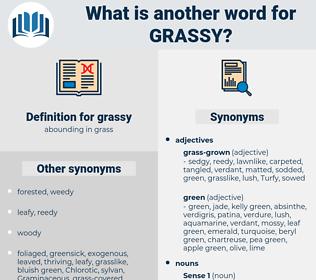 grassy, synonym grassy, another word for grassy, words like grassy, thesaurus grassy