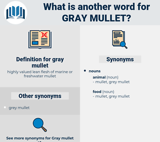 gray mullet, synonym gray mullet, another word for gray mullet, words like gray mullet, thesaurus gray mullet