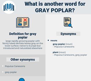 gray poplar, synonym gray poplar, another word for gray poplar, words like gray poplar, thesaurus gray poplar