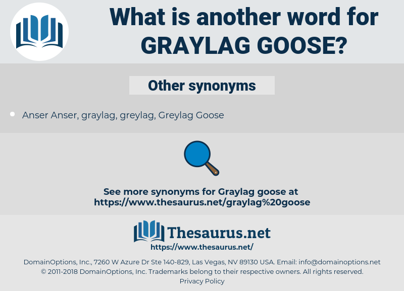 graylag goose, synonym graylag goose, another word for graylag goose, words like graylag goose, thesaurus graylag goose