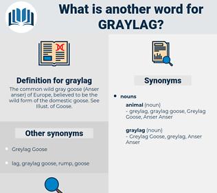 graylag, synonym graylag, another word for graylag, words like graylag, thesaurus graylag