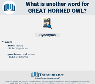 great horned owl, synonym great horned owl, another word for great horned owl, words like great horned owl, thesaurus great horned owl