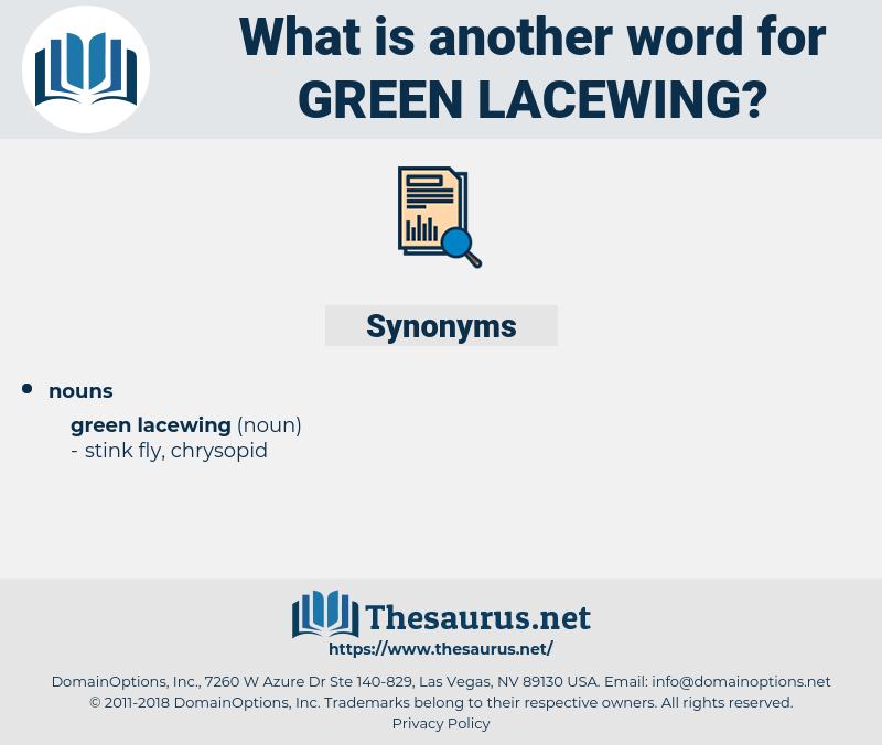 green lacewing, synonym green lacewing, another word for green lacewing, words like green lacewing, thesaurus green lacewing