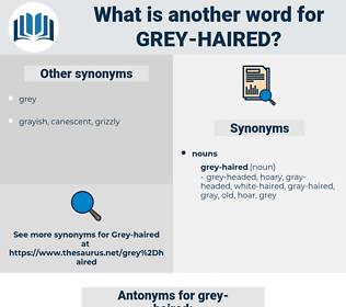grey-haired, synonym grey-haired, another word for grey-haired, words like grey-haired, thesaurus grey-haired