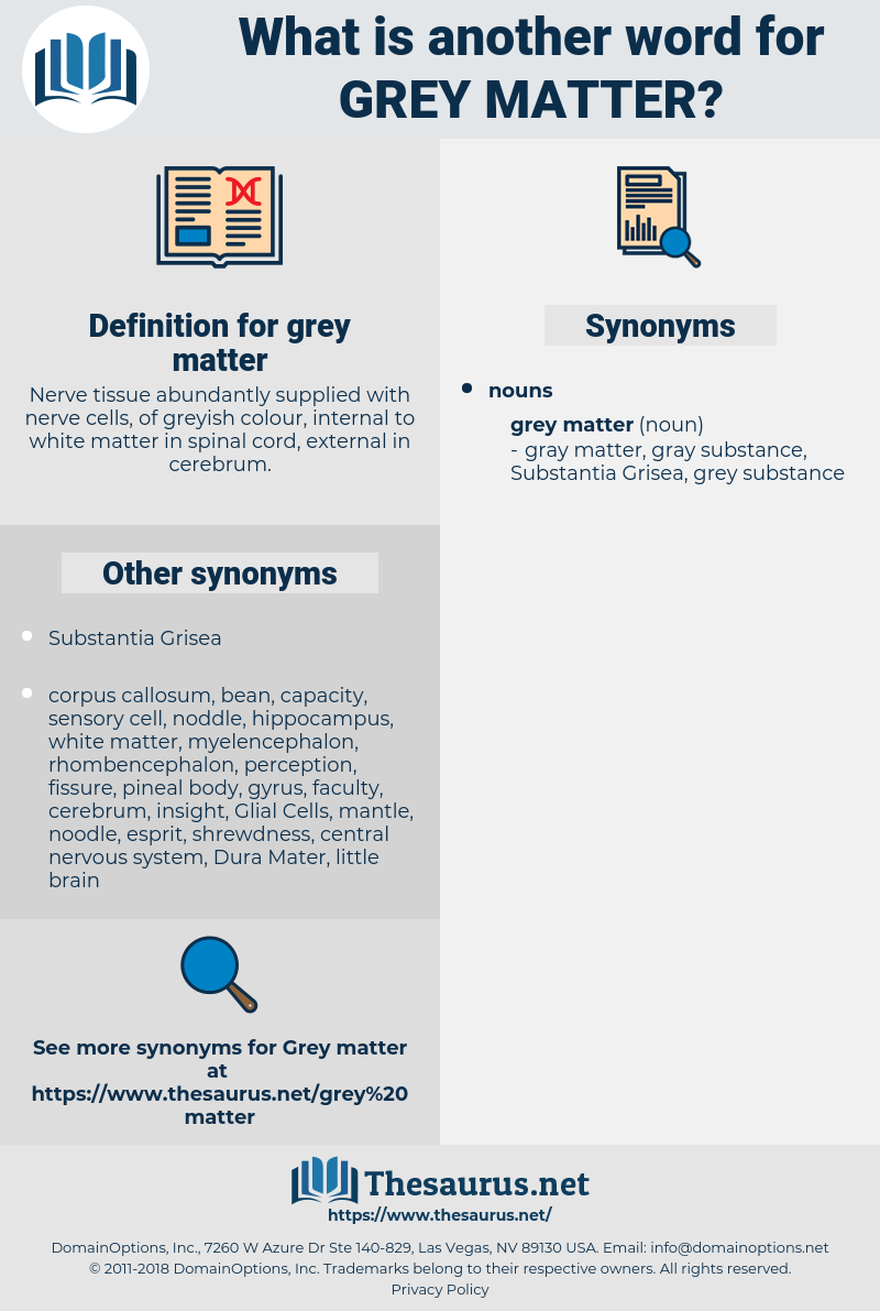 grey matter, synonym grey matter, another word for grey matter, words like grey matter, thesaurus grey matter