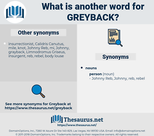greyback, synonym greyback, another word for greyback, words like greyback, thesaurus greyback