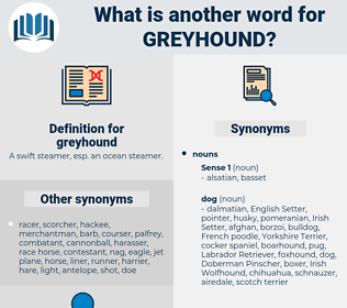 greyhound, synonym greyhound, another word for greyhound, words like greyhound, thesaurus greyhound
