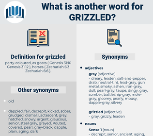 grizzled, synonym grizzled, another word for grizzled, words like grizzled, thesaurus grizzled